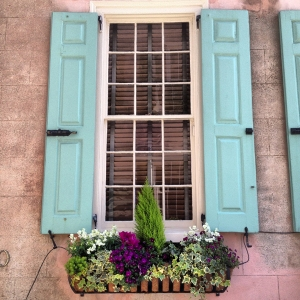 charleston-turquoise-window-box